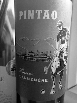 Bored of Merlot? Give Carmenère a try. More often than not you'll get a far more complex and rewarding wine for a fraction of the price you'd need to pay for a Merlot offering the same.