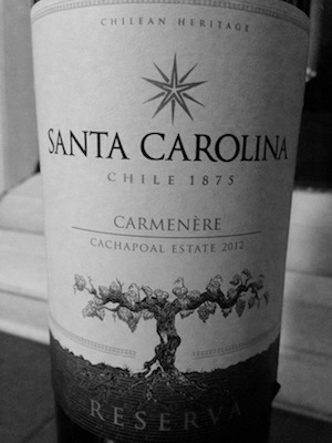 A meaty vanilla beast of a wine with lashings of fruit and soft white chocolate joy to be found.