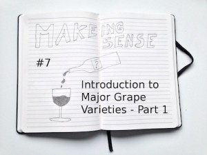 Making Sense (#7 Introduction to Major GRape Varieties - Part 1)